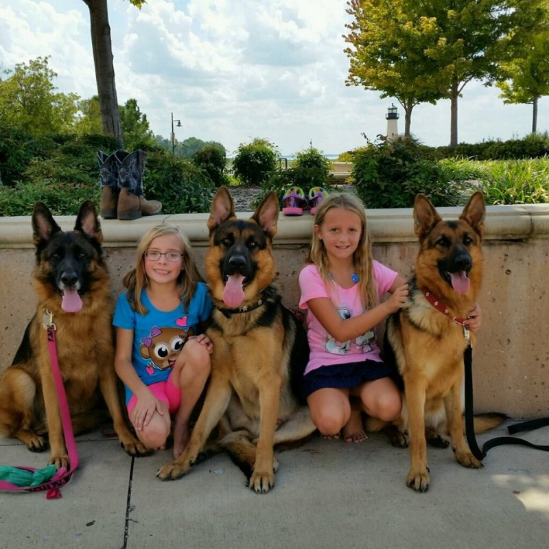 Ruby, Maxx and Bella with Kylei and Kylee, Mary and Charity's daughters
