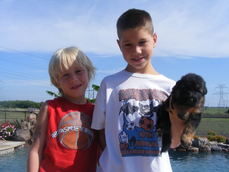 Chance and Tanner, my grandsons with one of Daffi puppies in 2007